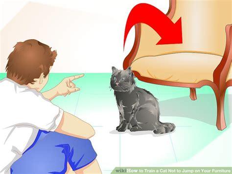 train  cat   jump   furniture  steps