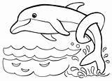 Delfin Delfine Malvorlagen Ausmalbild Fish Raskrasil 2cah sketch template