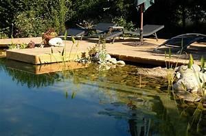 piscine naturelle prix et caracteristiques d39un bassin With prix piscine naturelle autoconstruction