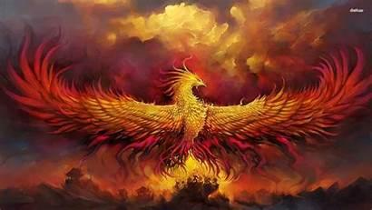 Phoenix Bird Wallpapers Start