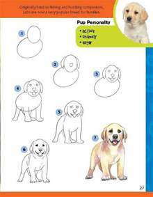 How to Draw Puppies Step by Step