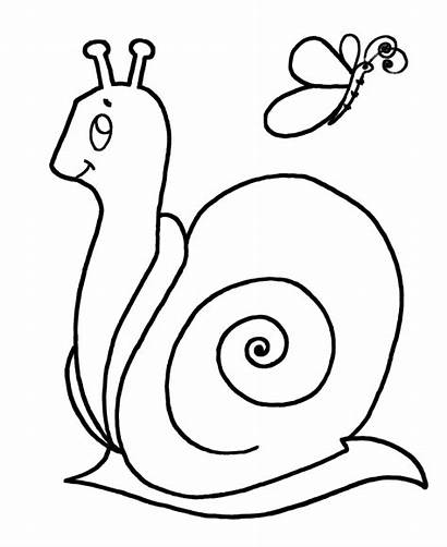 Coloring Easy Pages Snail