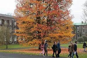 Adult Education | Maynooth University