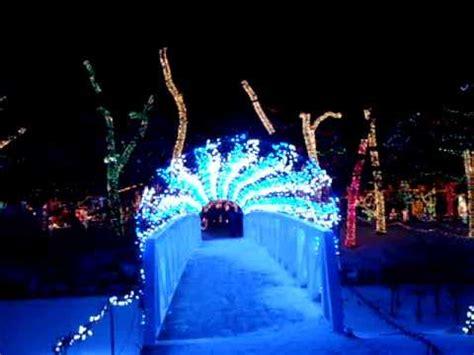 rhema lights 2010