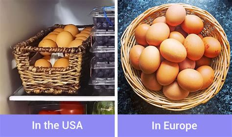fact depends   country   states people leave  eggs   room