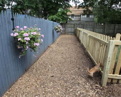 Images Of Dog Friendly Backyard No Grass Landscaping