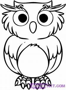 Owl Cartoon Pictures