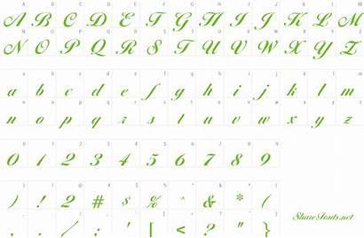 Diana Script Font Bold Agency
