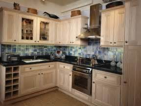 painting kitchen cabinets ideas bloombety painting the kitchen cabinets ideas painting the kitchen cabinets