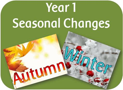 Year 1 Science Seasonal Changes Autumn & Winter Ks1 Teaching Resources Ebay