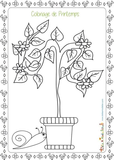 coloriage printemps frais  images home decor