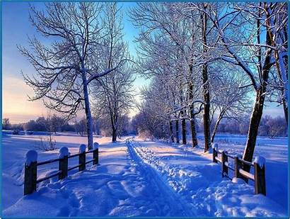 Winter Screensaver Snowy Screensavers Mac Biz