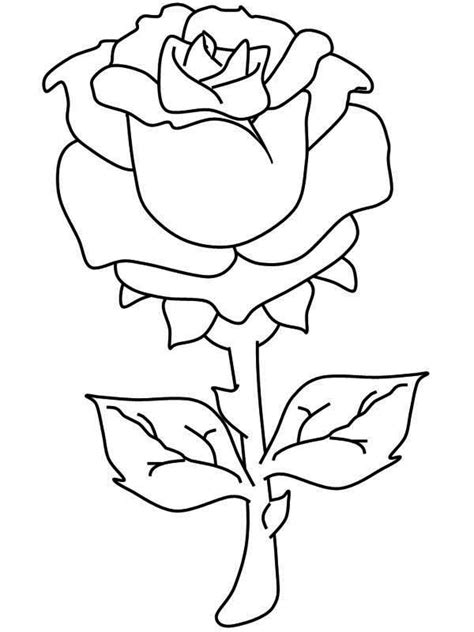 One Beautiful Rose Coloring Page - Download & Print Online