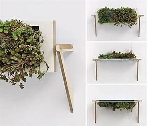 Grünpflanzen Für Innen : natural plant dekoration die luftige atmosph re supplies ~ Eleganceandgraceweddings.com Haus und Dekorationen