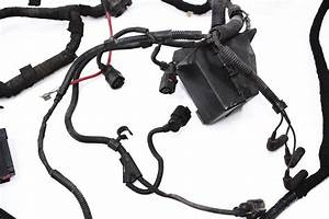 Engine Bay Ecu Wiring Harness 2001 Vw Beetle