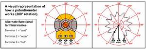 Potentiometers And Tone Capacitors  Guitarsite