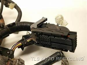 2007 Toyota Camry Engine Wire Harness - 82121-06750