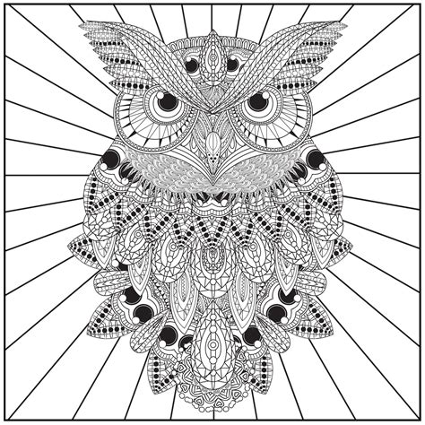 owl adult coloring pages  print coloring home