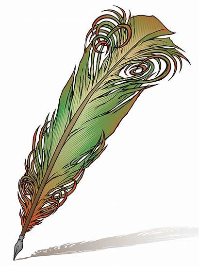 Pen Quill Feather Writing Illustrations Cliparts Colouring