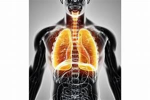 3 Simple Steps To Optimal Health