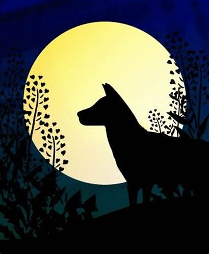 Animations Wolf Howling Animated