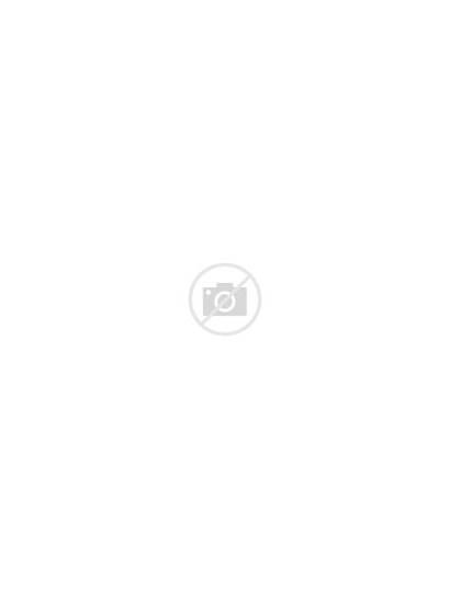 Sunglasses Round Chloe Modified Brown Tortoise