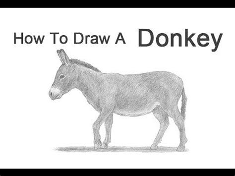 draw  donkey youtube