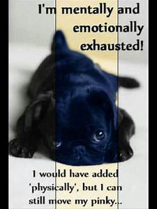 I Am Emotionally Exhausted Quotes. QuotesGram