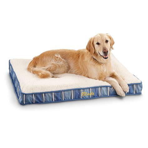 memory foam orthopedic 30 quot x 40 quot pet bed 236485 kennels