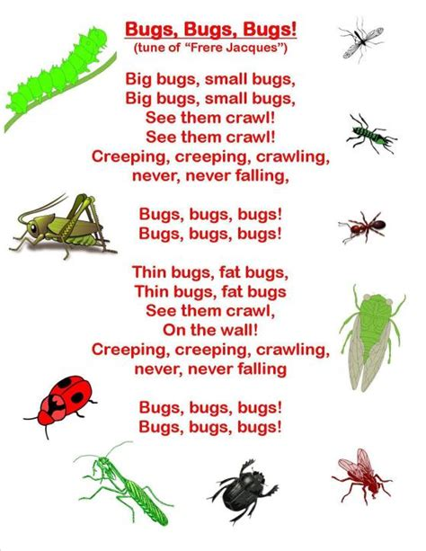 bug insect songs amp fingerplays wee bee reads 304 | creepy crawly 1 1
