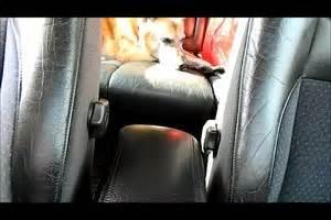 Leder Reinigen Hausmittel : video ledersitze reinigen so wird das leder im auto sauber ~ Yasmunasinghe.com Haus und Dekorationen