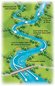 How To Fish A Flooded River  U2014 Angling Times