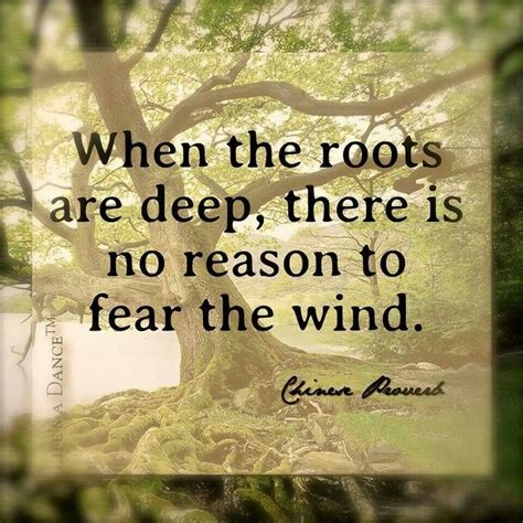 deep roots family quotes quotesgram