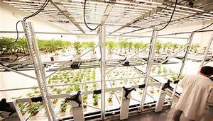 Vertical Grow Systems For Indoor Farms Centrix