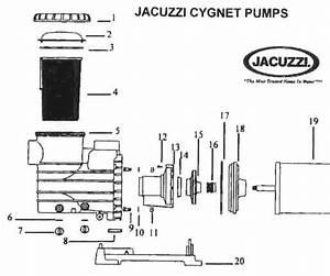 Jacuzzi Pool Pump Parts Diagram
