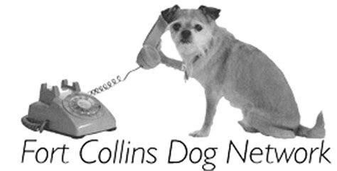 Doge Faucet Fc Network by Fort Collins Network Pet Elite Taxi