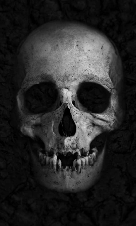 wallpaper skull hd