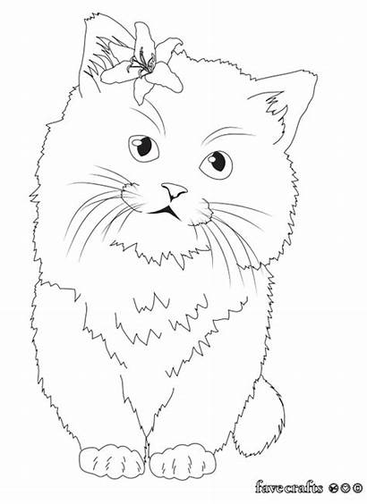 Coloring Kitten Pages