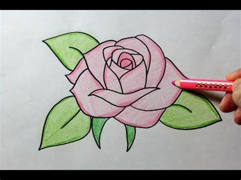 drawing  rose youtube