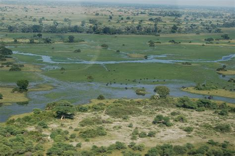 File:Okavango Delta, Botswana (2674373339).jpg - Wikimedia ...