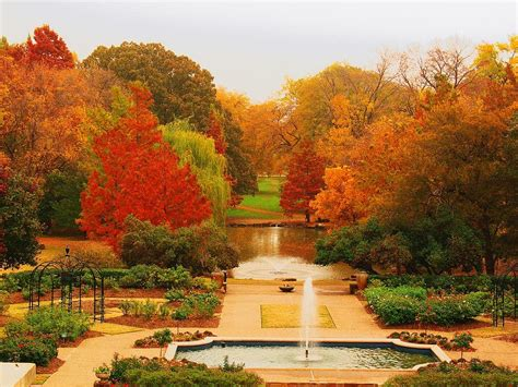 fort worth botanical gardens photograph by robert brown