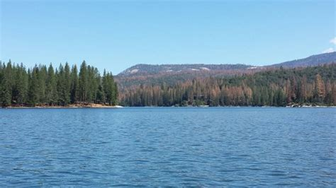 Millers Boat Rentals Bass Lake by Tubing The Patio Boat Picture Of Miller S Landing