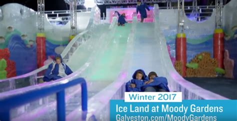 moody gardens ice land    holiday attraction