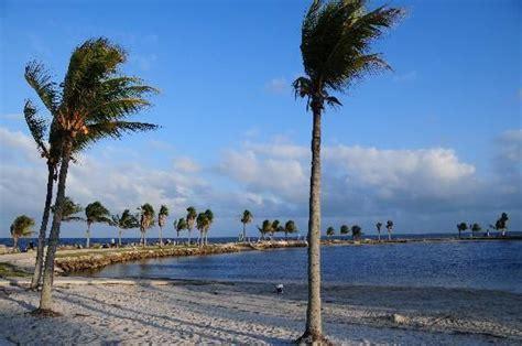 Sports Grill Hammocks Miami Fl by Matheson Hammock Park Has A Great Big Salt Water Pool And
