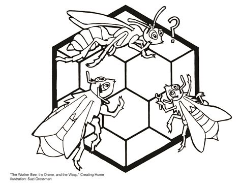 aesops fable   worker bee  drone   wasp