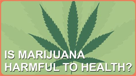 Is Marijuana Harmful To Health?  Youtube. All Reverse Mortgage Company Reviews. Commercial Construction Loans. Colorado Articles Of Incorporation. Car Insurance Portland Or Duke Mba Admissions. Athens Regional Medical Center. Difference Between Checking And Savings. Forwarded Phone Number Service Carts For Sale. University Of Mississippi Distance Learning