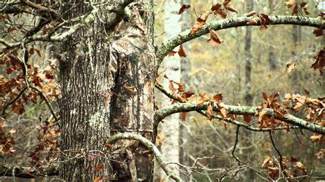 Deer Hunting Iphone Wallpaper Hunting Wallpaper Hd Wallpapersafari