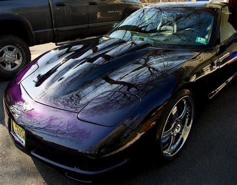 Dark Purple Car Paint Samples