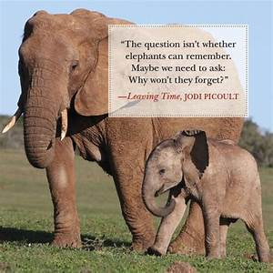 """""""The question isn't whether elephants can remember. Maybe ..."""