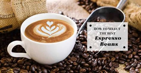 You can get the best discount of up to 50% off. How to Select the Best Espresso Beans